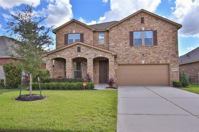 League City Single Family Home For Sale: 2818 Scandicci Lane