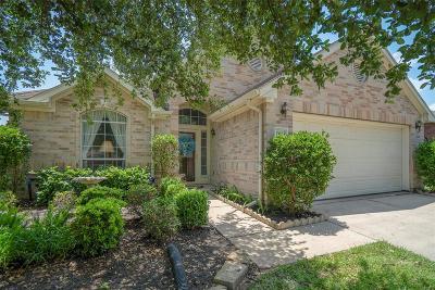 Single Family Home For Sale: 11103 Creekline Green Court