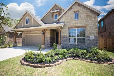 Spring Single Family Home For Sale: 20326 Little Costilla Way