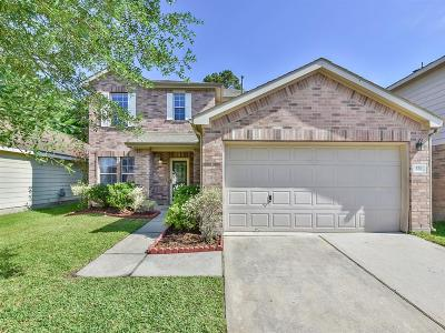 Houston Single Family Home For Sale: 323 Remington Heights Drive