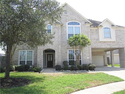 Cypress Single Family Home For Sale: 19103 Knoll Dale Court