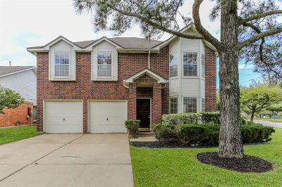 Sugar Land Single Family Home For Sale: 845 Lakeview Drive