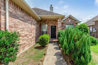 Tomball Single Family Home For Sale: 10015 Arcadian Springs Lane