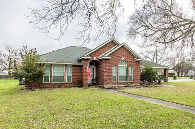 Columbus TX Single Family Home For Sale: $295,000