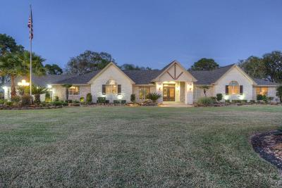 Pearland Single Family Home For Sale: 1537 Westfield Street