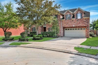 Sugar Land Single Family Home For Sale: 7006 Dunmeyer Court