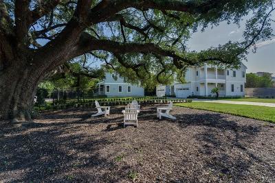Houston Single Family Home For Sale: 424 Marshall Street
