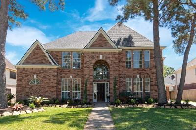 Houston Single Family Home For Sale: 3219 Amber Forest Drive