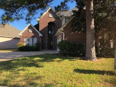 Houston Single Family Home For Sale: 7222 N Hearthstone Green Drive