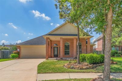 Houston Single Family Home For Sale: 17007 Arrows Peak Lane
