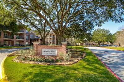 Kingwood Condo/Townhouse For Sale: 2803 Kings Crossing Drive #119