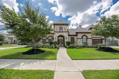 Katy Single Family Home For Sale: 5103 Oak Rambling Drive