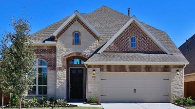 Single Family Home For Sale: 28205 Knight Peak Drive