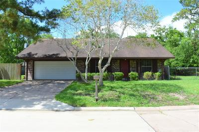 Dickinson Single Family Home For Sale: 4905 Green Willow Lane