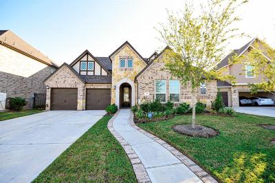 Sugar Land Single Family Home For Sale: 95 Scepter Run