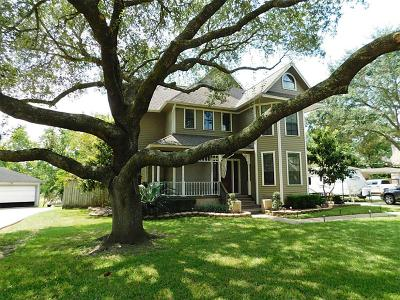 Friendswood Single Family Home For Sale: 1906 Talon Drive
