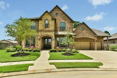 Tomball Single Family Home For Sale: 17427 Stonebrook Run Court