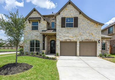 Manvel Single Family Home For Sale: 4201 Silver Spur Court