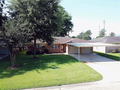 Houston Single Family Home For Sale: 871 Sara Rose Street
