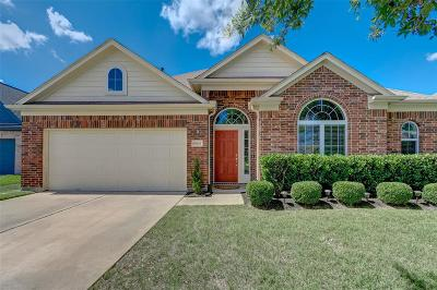 Houston Single Family Home For Sale: 18614 Christy Park Circle
