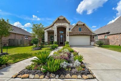 Manvel Single Family Home For Sale: 3126 Chuska Mountain Lane