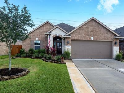 League City Single Family Home For Sale: 2109 Llerena Lane