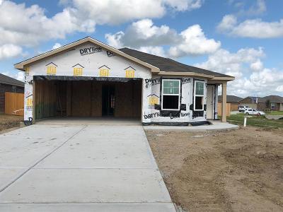 Texas City Single Family Home For Sale: 2315 Lagan Lane