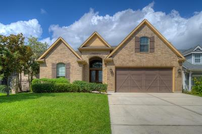 Montgomery Single Family Home For Sale: 21 La Costa Drive
