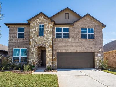 Richmond Single Family Home For Sale: 6010 Hackberry Branch Lane