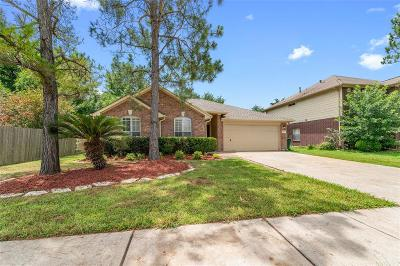 Pearland Single Family Home For Sale: 4922 Lochman Lane