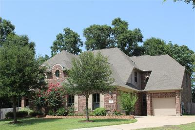 Conroe Single Family Home For Sale: 9098 Rose Canyon Drive
