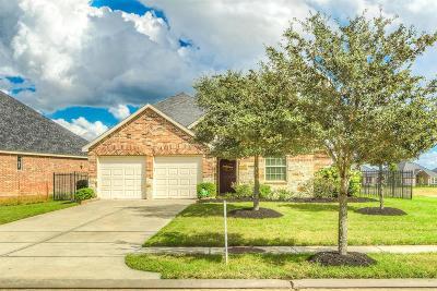 Rosenberg Single Family Home For Sale: 236 Round Lake Drive
