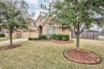 Pearland Single Family Home For Sale: 2009 Biscayne Lake Drive