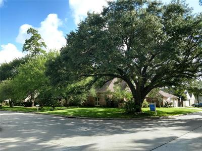 Houston Single Family Home For Sale: 15502 Ripplewind Lane