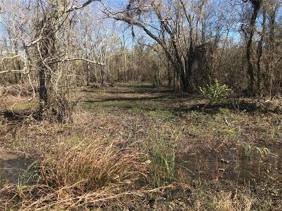 Brazoria Residential Lots & Land For Sale: 6205 Septimo Street
