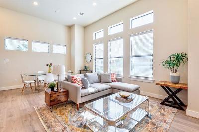 Houston Single Family Home For Sale: 2616 Riverside Drive #M