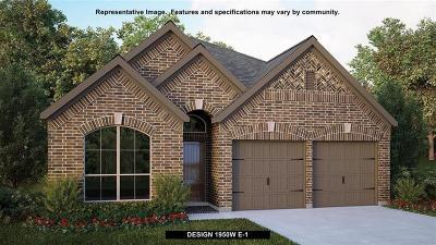 Montgomery Single Family Home For Sale: 179 Buckeye Drive