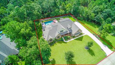 Tomball Single Family Home For Sale: 22810 Timberlake Village Road
