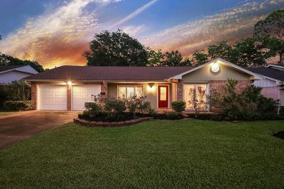 Houston Single Family Home For Sale: 8835 Bintliff Drive