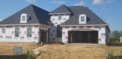 Katy Single Family Home For Sale: 7045 N Savannah Run