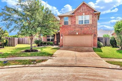 Katy Single Family Home For Sale: 25407 Melody Canyon Court
