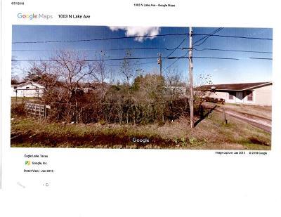 Eagle Lake Residential Lots & Land For Sale: 1003 N Lake Avenue N