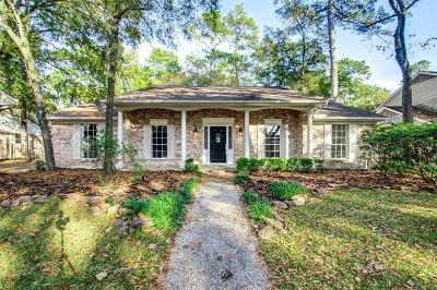 Houston Single Family Home For Sale: 738 Langwood Drive
