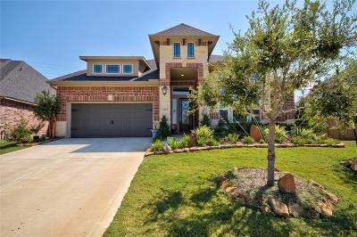 Houston Single Family Home For Sale: 14038 Dunsmore Landing Drive