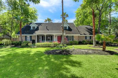 Single Family Home For Sale: 119 Pine Shadows Drive