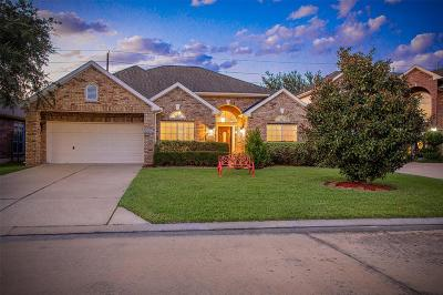 Pearland Single Family Home For Sale: 3823 Arbor Drive