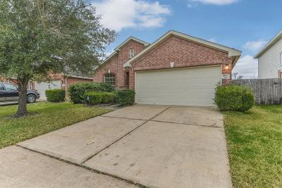 Houston Single Family Home For Sale: 10030 Williams Field Drive