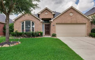 Katy Single Family Home For Sale: 2826 Fair Chase Drive