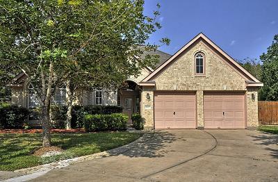 Missouri City Single Family Home For Sale: 4607 Misty Morning Court