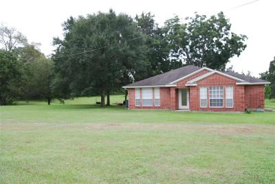 Richards Single Family Home For Sale: 10989 Fm 149